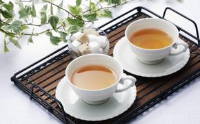 cups, drink, tea, sugar