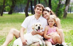 собаки, собака, животные, люди, семья, любовь, дружба