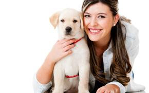 собака, собаки, животные, щенок, щенки, девушка, дружба, белый фон