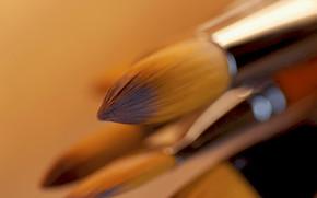 Cartoleria, per gli artisti, spazzolare