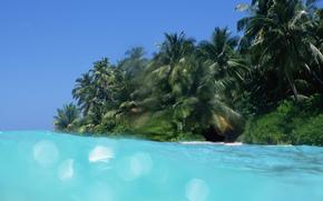 вода, море, океан, природа, пляж, небо, пальмы, отдых, релакс, лето