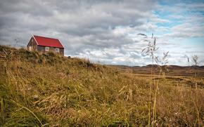 campo, cielo, Coperto, nuvole, cabina, natura, paesaggio, spighe di grano