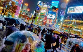 city, megalopolis, Japan, Tokyo, people, advertising, building, Umbrellas, rain