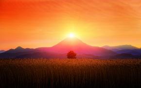 Mountains, sun, field, sky, nature, landscape