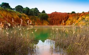estanque, plantas, costa, Hills