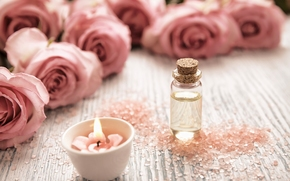 Flowers, Roses, BUDS, candle, bubble