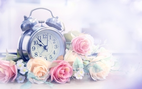 alarm clock, watch, Flowers, Roses