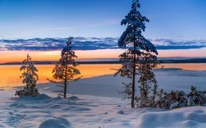 Värmland, Svezia, Värmland, Svezia, inverno, nevicata, lago, alberi, tramonto