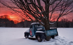 Ontario, Canada, 1951 Ford F1, Онтарио, Канада, зима, снег, закат, дерево, пикап