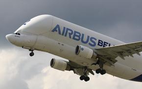 Airbus A-300-605ST Beluga, Airbus Beluga, piano