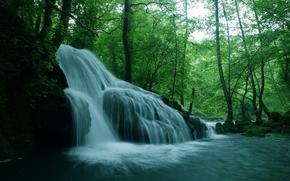 bosque, árboles, río, cascada, Rocas, naturaleza