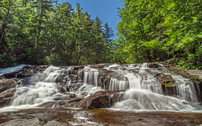 forest, trees, river, waterfall, Rocks, nature