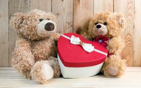 情人节, 泰迪熊, 熊, 一对, 礼物, 箱
