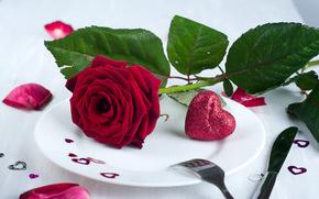 День Святого Валентина, цветок, роза, сердечки, сердце, лепестки, тарелка