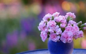 гвоздики, букет, ваза
