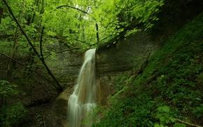 лес, деревья, скалы, водопад, природа