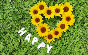 holidays, holiday, Flowers, sunflower, heart, inscription, Valentine
