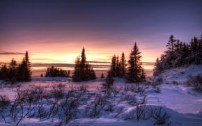 зима, закат, снег, деревья, пейзаж