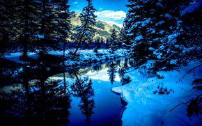 San Miguel Rio, Colorado, inverno, rio, árvores, paisagem