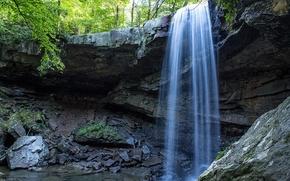 Cucumber Falls, Ohiopyle State Park, Yorkshire, лес, деревья, скалы, водопад, пейзаж