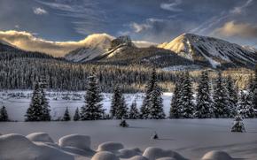 зима, горы, деревья, снег, сугробы, пейзаж