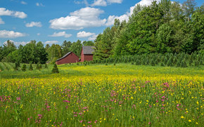 Agriculture in Bethlehem, NH, field, home, trees, landscape