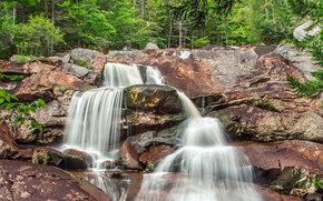 лес, скалы, водопад, природа