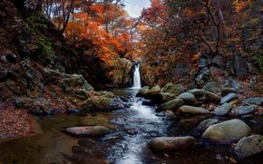 водопад, осень, камни, деревья