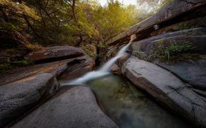 cascata, estate, pietre, alberi