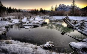 tramonto, inverno, lago, alberi, paesaggio