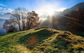 Montagne, Colline, sole, alberi