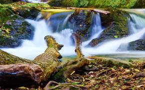 водопад, листва, осень