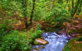 водопад, деревья, лето, зелень