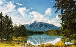 Montagne, lago, alberi, paesaggio