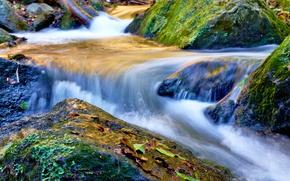 cascata, pietre, autunno