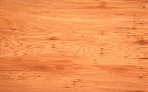 текстура, текстуры, дерево, фон, дизайнерские фоны, текстура дерева