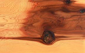 BESCHAFFENHEITS, Texture, Baum, Hintergrund, Design Hintergründe, Holzstruktur