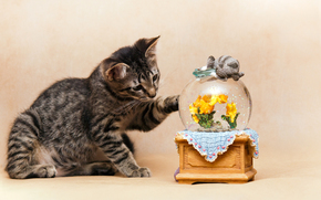 COTE, gatto, gatto, gattino, sfondo