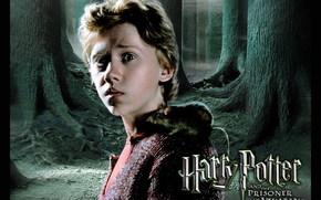 Harry Potter et le Prisonnier d'Azkaban, Harry Potter et le Prisonnier d'Azkaban, film, film