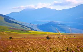 Italy, Mountains, field, sky, hay