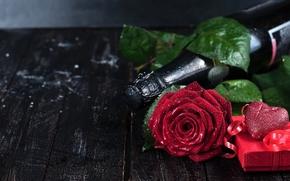 Valentine, rosa, flor, Champán, botella, regalo, corazón