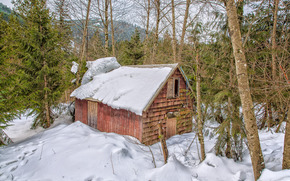 winter, forest, cabin, trees, landscape