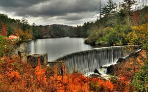 cascata, Rocce, fiume, foresta, alberi, natura, autunno