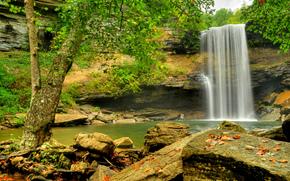 瀑布, 岩石, 河, 森林, 树, 性质