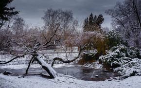 park, winter, lake, trees, landscape