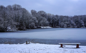 winter, lake, trees, Warsaw, park