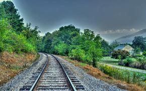 chemin de fer, Glencoe, Alabama, arbres, maison, paysage
