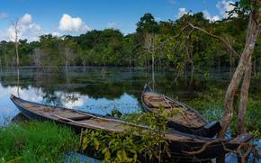 Fluss, Schiff, Bäume, Landschaft, Kambodscha