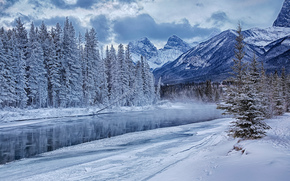 Bow river, Canada, Mountains, river, winter, trees, landscape