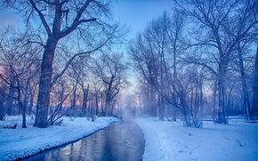invierno, río, árboles, paisaje, Calgary